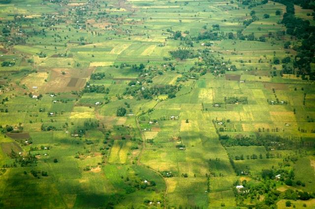 Áreas agrícolas nos entornos de Nairobi