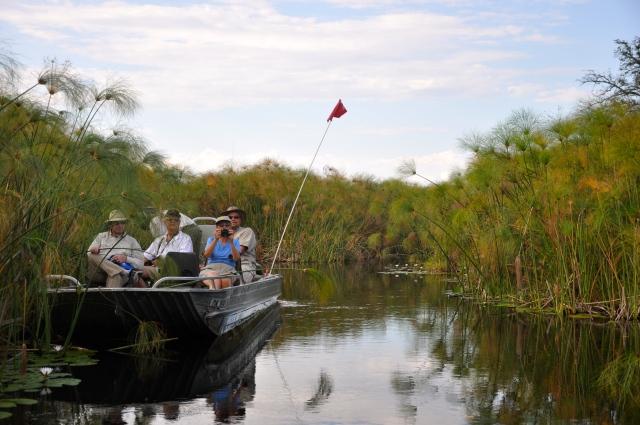 Safari de barco