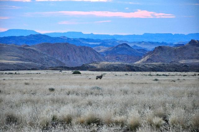 Seguimos em direção às montanhas na busca aos Elefantes do Deserto