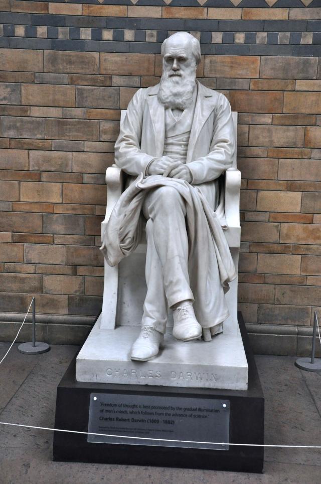 A estátua de Charles Darwin no Museu de História Natural