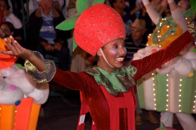 Personagem do Natal Luz.
