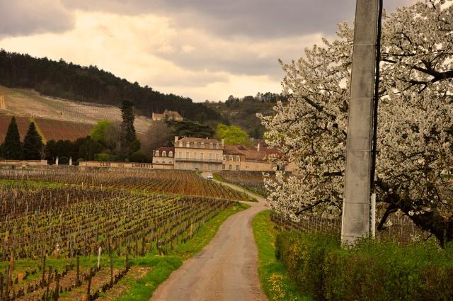 Os campos da Borgonha.