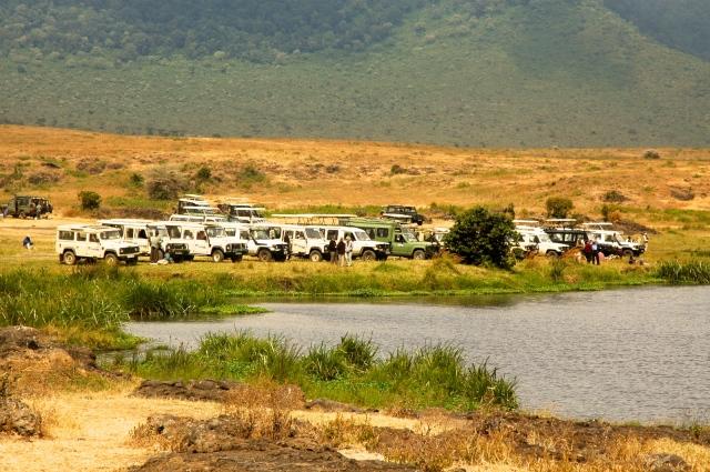 Os carros dos safaris param na beira do lago para o almoço.