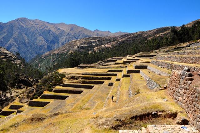Os terraços agrícolas dos Incas.