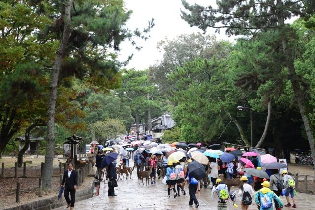 Nara - uma cidade cheia de parques e templos.