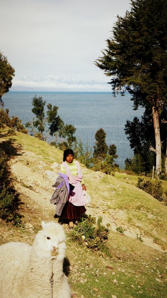 Foto da lhama por 2 bolivianosFoto da lhama por 2 bolivianos