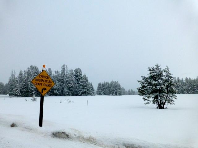A estrada invadida pela neve.