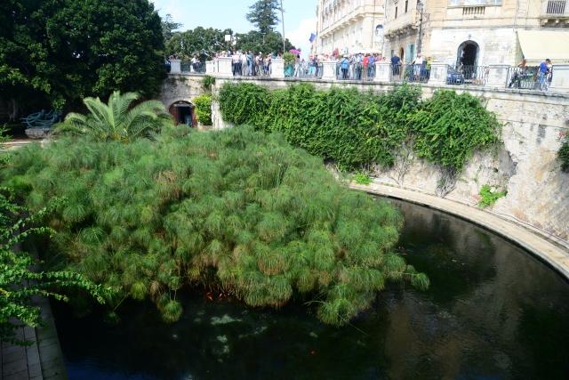 A Fonte de Aretusa.