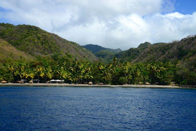 A vegetação tropical domina as paisagens.