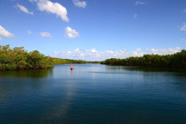 O Rivière Salée entre as duas grandes ilhas de Guadalupe.