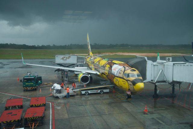"""O avião da Gol pintado pelos """"Gêmeos""""."""