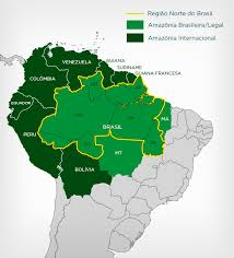 A Amazônia Legal ultrapassa o território brasileiro.