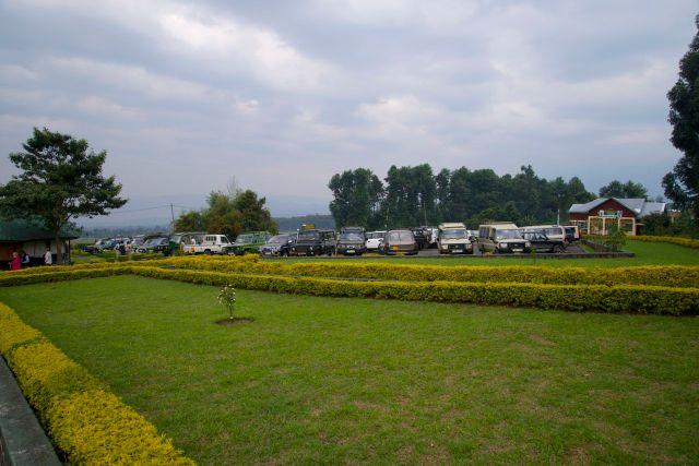 Os carros de safari, preparados para sair ao encontro dos gorilas.