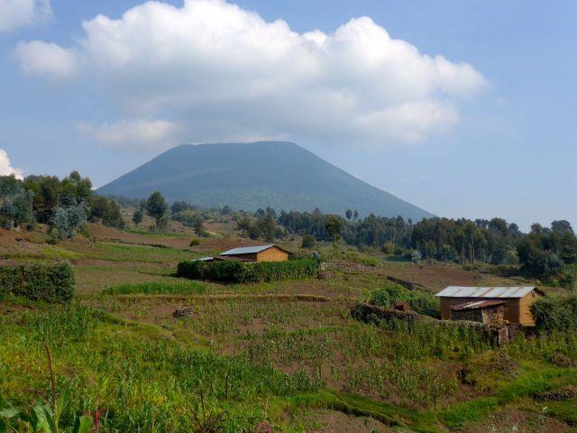 As Montanhas Virunga.