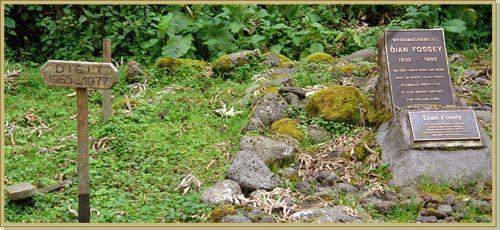 Os túmulos de Dian Fossey e Digit, no Centro de Pesquisa Karisoke