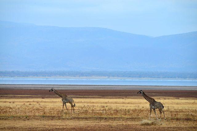 A bela paisagem da Tanzânia.