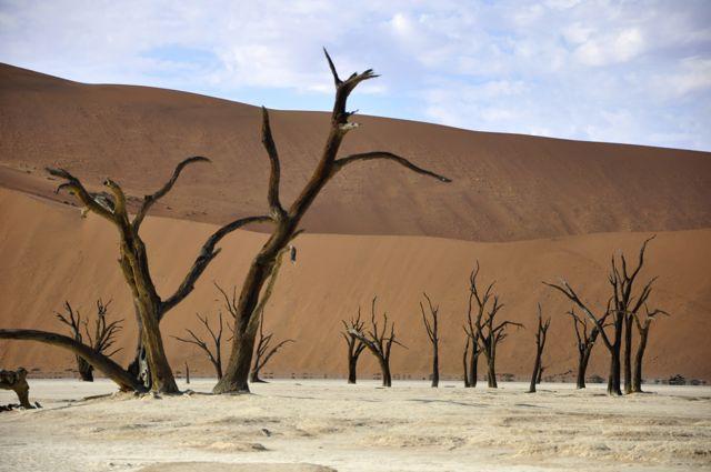 O Vale da Morte na Namíbia