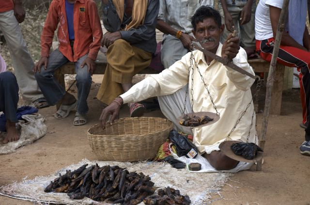 Vendedor de peixe seco, na Índia