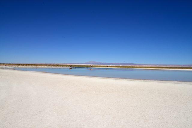 A Laguna Cejar