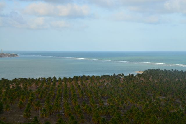 A vista do Mirante do Gunga.