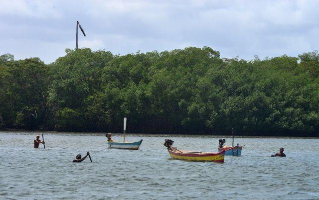 Os pescadores e o manguezal.