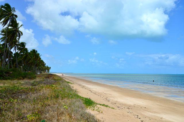 A bela praia de Maragogi, no litoral norte de Alagoas.