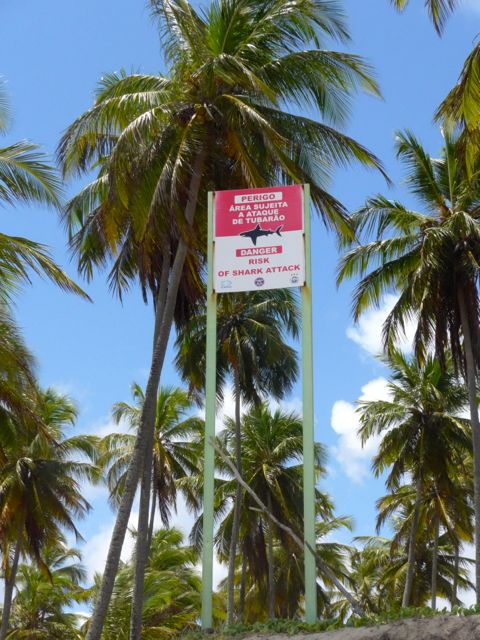 Aviso de tubarões na Praia da Reserva do Paiva.